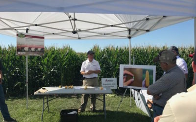 Farm-Based Research and Demo Sites Showcase Role of Equipment and Impact on Yields