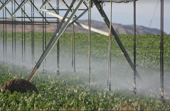 Technology Ushers In Next Wave of Irrigation Efficiency