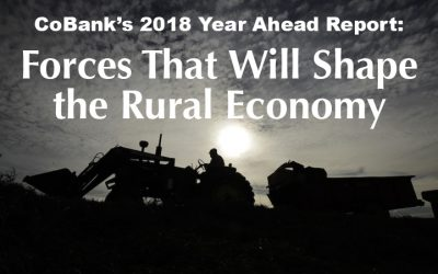 Ten Key Factors Point to a Mixed, But Improving Outlook for Rural America in 2018