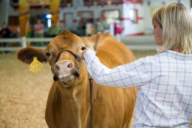 May 4-H continue to grow and strengthen the county fairs in the tradition for which it has lasted all these many years.