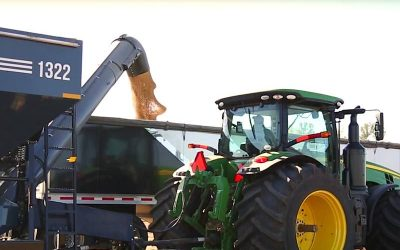 Demco Adds Two New Models to Their High Capacity Grain Cart Lineup