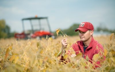 Use Yield Estimates to Help Guide Harvest Decisions
