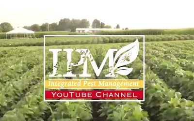 New Video Channel for Integrated Pest Management Program Created by IA State