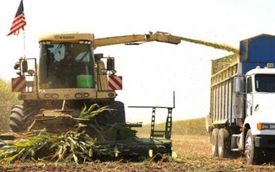 Improve Forage with Adapter Kits for Krone Forage Harvester Heads