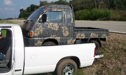 Mini Dump Trucks: A Different Kind of Workhorse For Your Farm