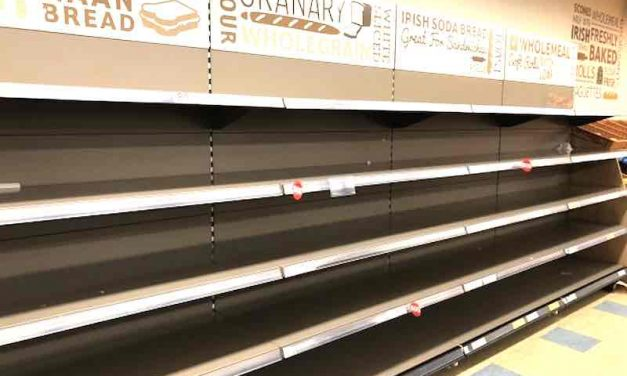 "Snowstorm Warning Panic: Emptied bread shelves and other scarey ""Snowpocalypse"" threats [HUMOR]"