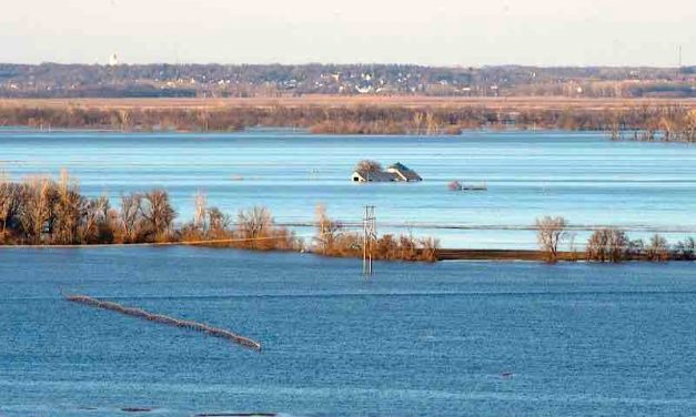 Flood Recovery Resources: A short list of helpful links compiled by NSU