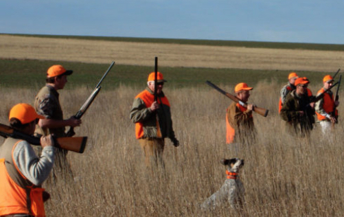 New Legislation Introduced to Encourage Landowners to Open Their Property for Hunting, Fishing