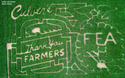 "33 ""Thank You Farmers"" Mazes Have Been Grown Nationwide Since 2014"
