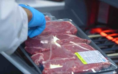 Blockchain Technology from IBM That Could Help Sell Beef [VIDEO]