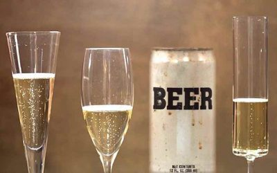 """When One Son-In-Law is Frugal, and the Other One Has """"Champaign"""" Tastes"""