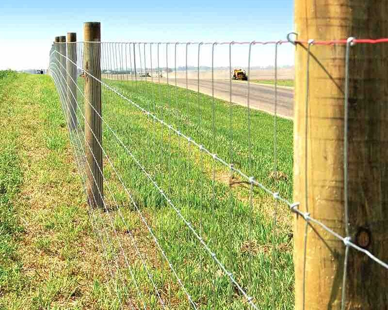 Seven Fencing Tips for Cattle