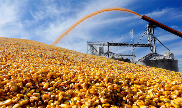 New Yield Prediction Model Outperforms the USDA's WASDE Estimations