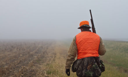 When the Hunt Backfires: Ken Knight delves in deep on the issue food safety