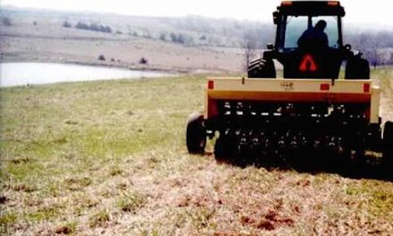 Consider Frost Seeding or Interseeding Pastures This Spring