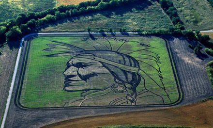 The Crop Artist: Colossal Earthworks of Stan Herd