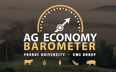 Farmers are Stressing More About Financial Issues, According to the March 2019 Ag Economy Barometer Report