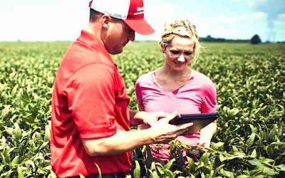 """New App Aims to Help Producers """"Take Action Against Weeds"""""""