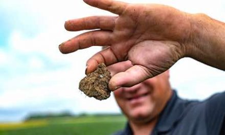 New Program Grows Farmer Participation in Soil Health Data Project