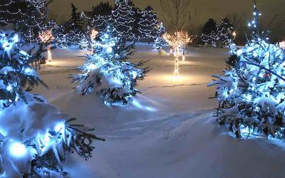 The Meaning Of Christmas, Revisited by Dr. Rosmann: A few things have changed since 1988