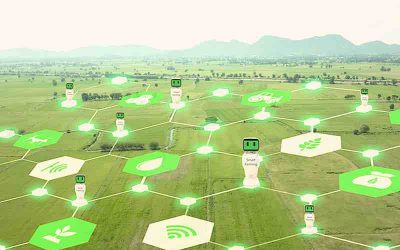 Digital Agriculture – Where are we at Today? Four industry experts weigh in.